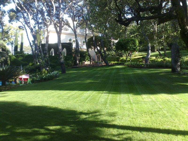 jardins et pelouse jardin n 1. Black Bedroom Furniture Sets. Home Design Ideas