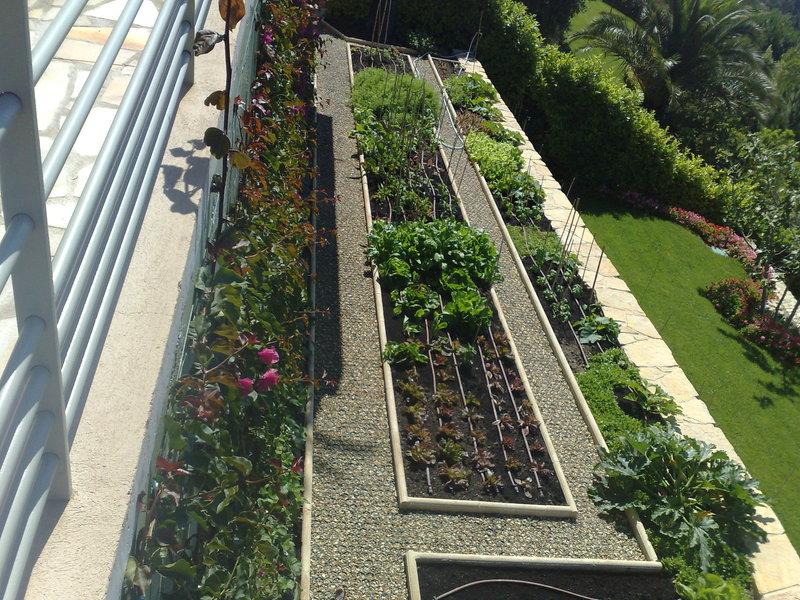 Entretien de pelouse jardin limoges 1933 for Entretien d un jardin potager